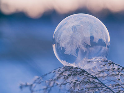 shallow focus photography of bubble on leaves