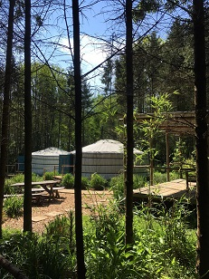 Barefoot Yurts