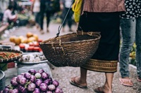 walking in tropical market with basket