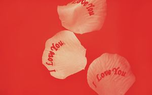 Valentines Day rose petals