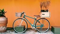 bike with plants on rear rack